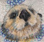 SOLD Mini Otter Mixed Media 4 x 4""